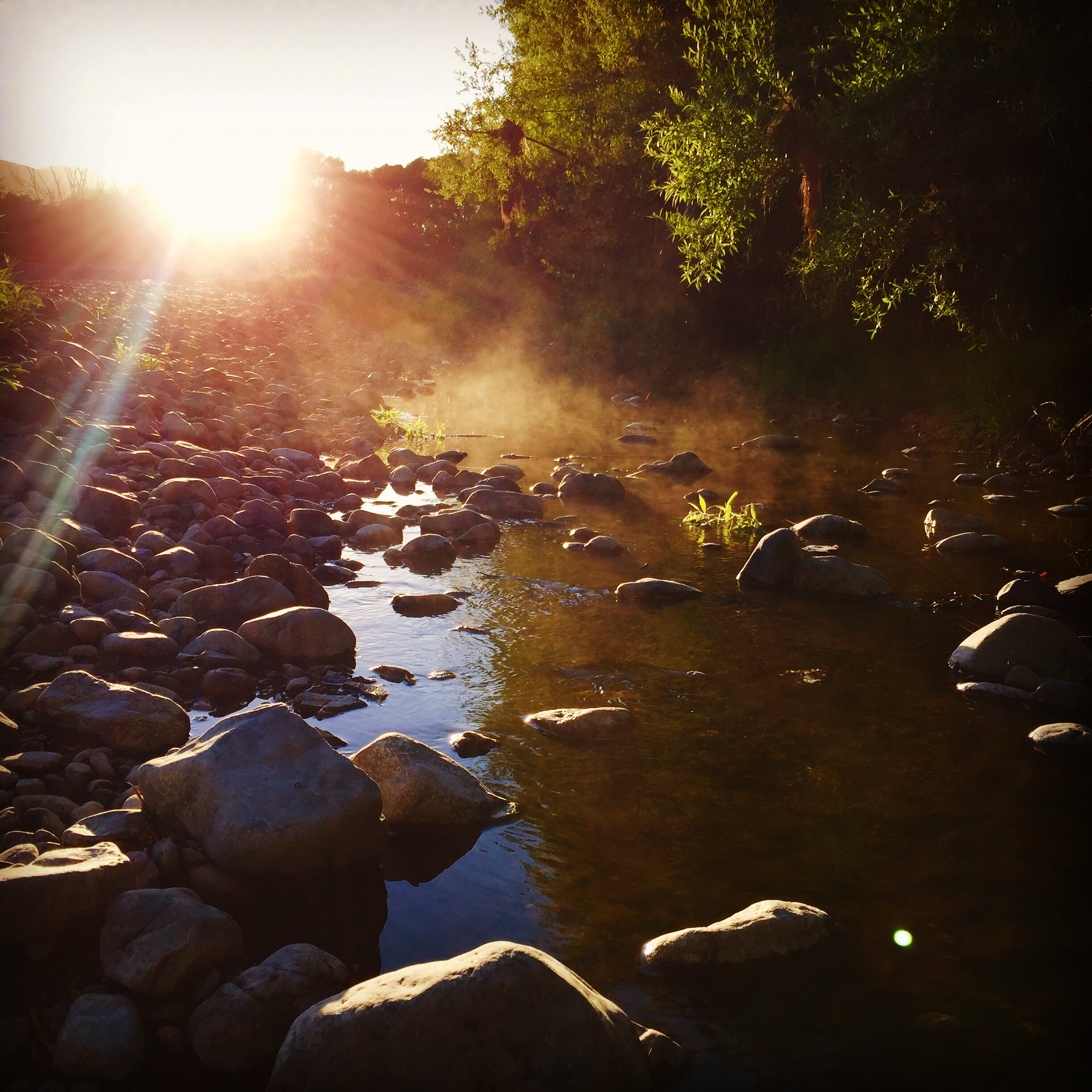 Sunrise at the river